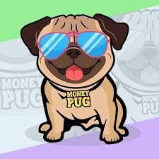 Money Pug