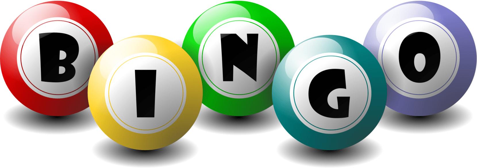 Bingo Loans Loan Review...