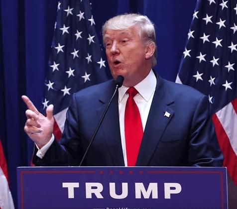 Trump VP Pick