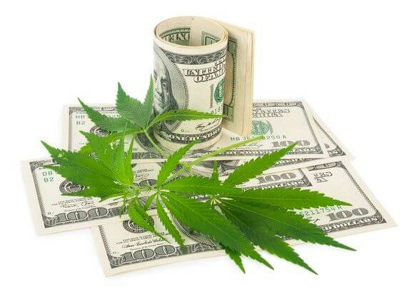 Investing In Marijuana Stocks...