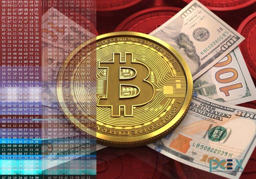 Bitcoin New Zealand