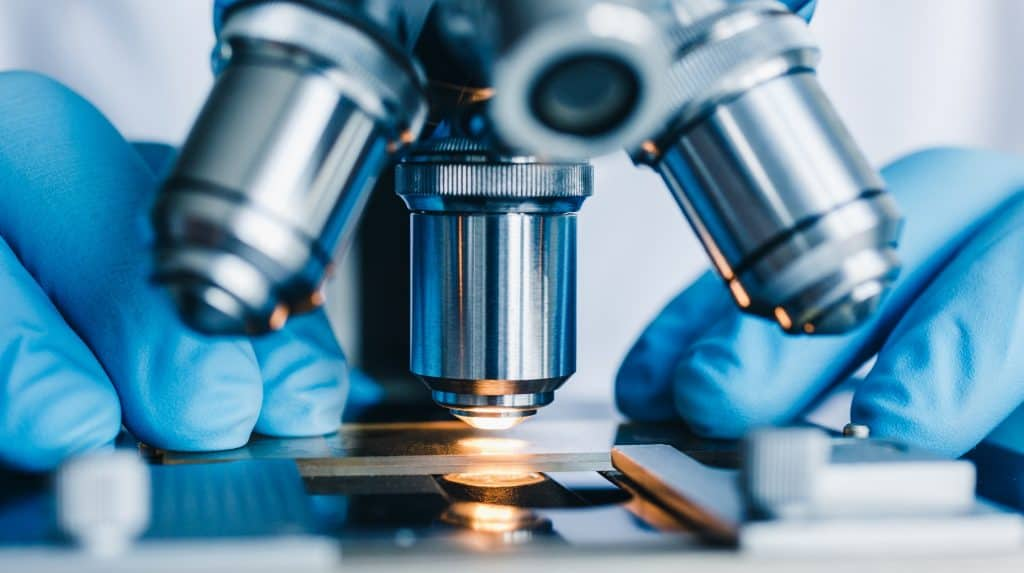Top 7 Biotech Stocks to Invest in August - LearnBonds.com