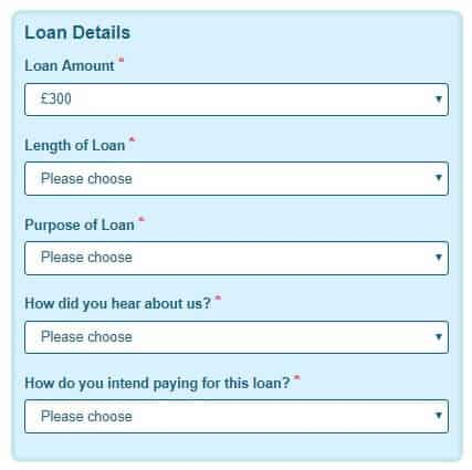 Wizzcash loan application page capturing loan details