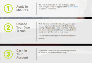 Screengrab of the loan application process on Rise