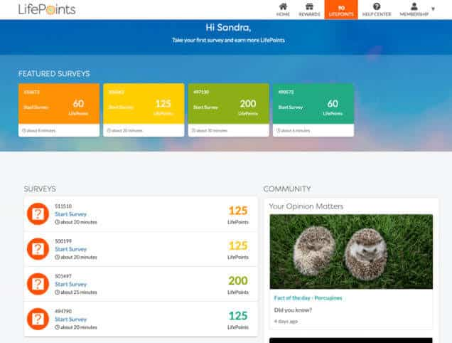 Lifepoints dashboard