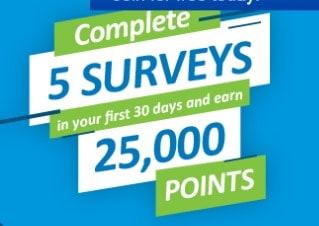 vipvoice survey