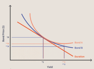 Bond Convexity: The Relationship...