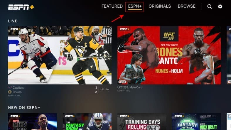 Where to Watch UFC in the United States
