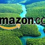 Amazon.com vs THE Amazon