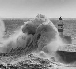 no-safe-harbour